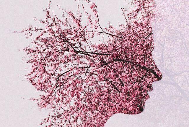 fiori-di-ciliegio-alzheimer-viso